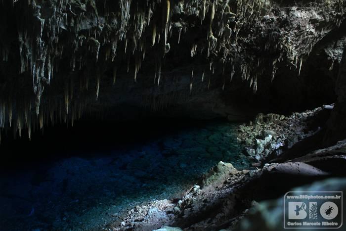 Gruta do Lago Azul Bonito MS cod4588