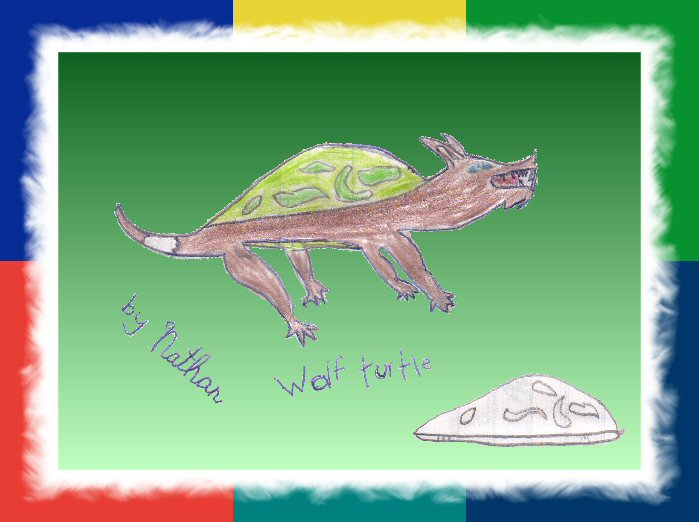 """""""Wolf Turtle,"""" by Nathan"""