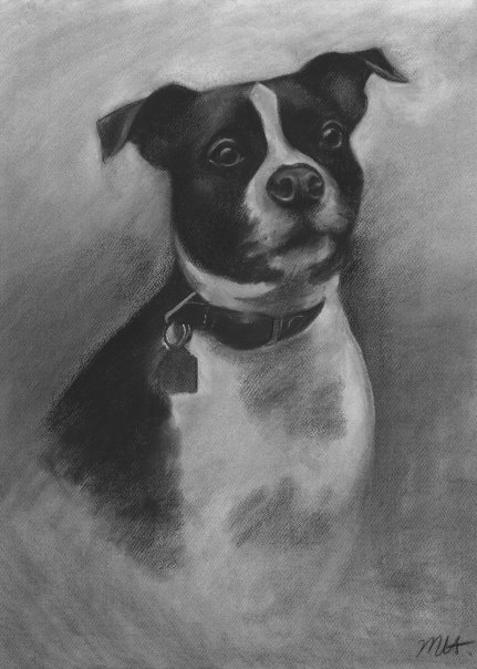 CHARCOAL DRAWING OF OZI