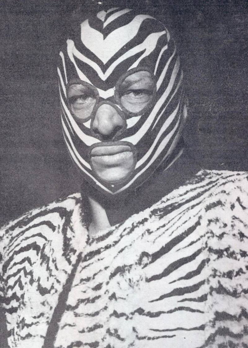 Zebra Kid-George Bollas