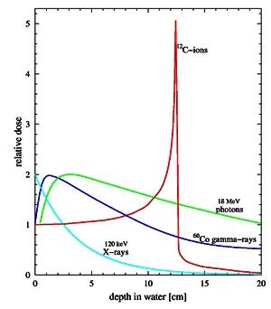 Ionizing Radiation Depth Dose Curves