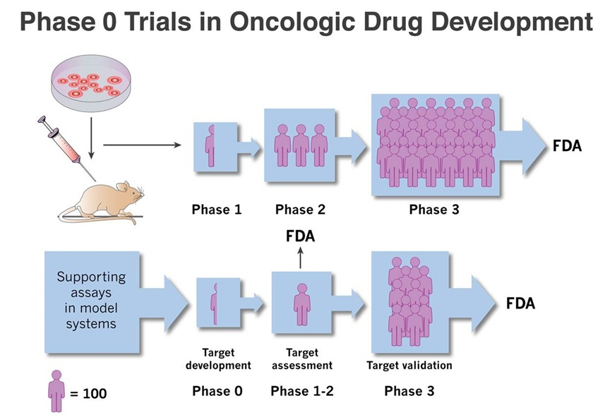 "Phase ""0"" clinical trial development path"