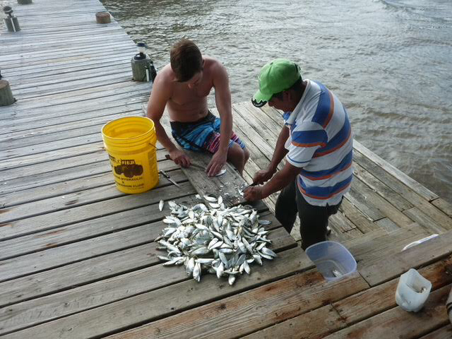 a good day's catch