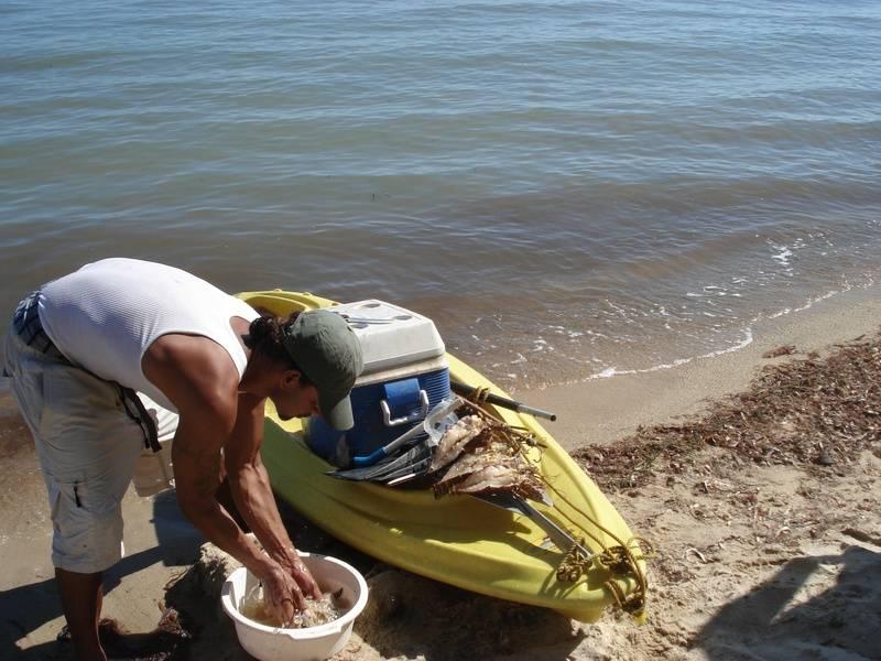 Fresh lobster delivered beach-side
