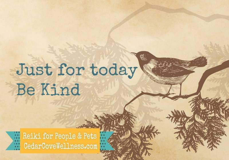 Just for today, be Kind