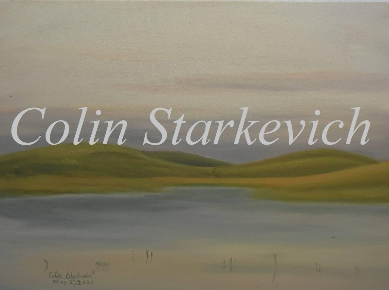 "Ephemeral wetland (12 by 16"" oil on canvas)"
