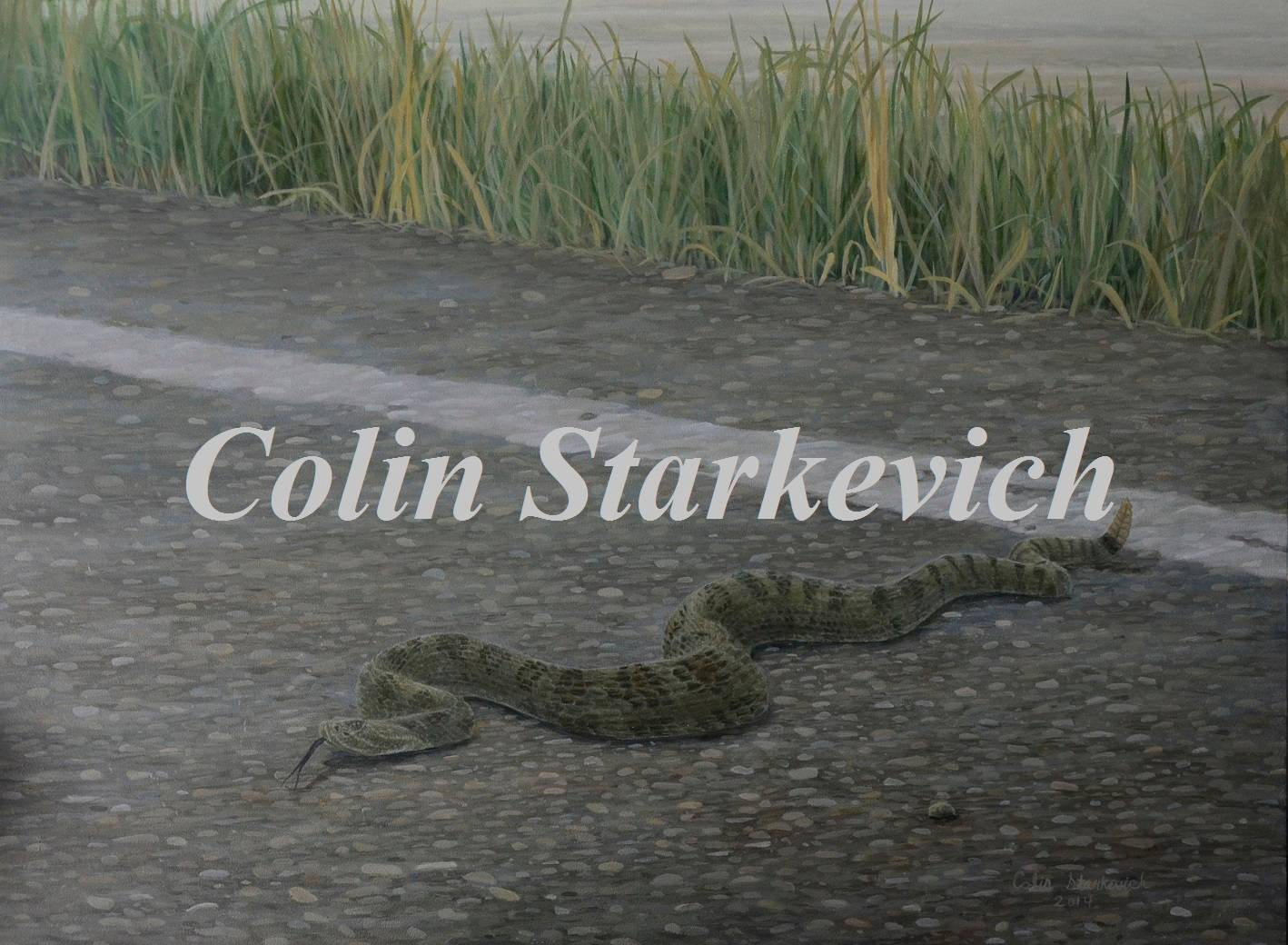"""Eyes on the Road - Rattlesnake (18 by 24"""" acrylic on board)"""