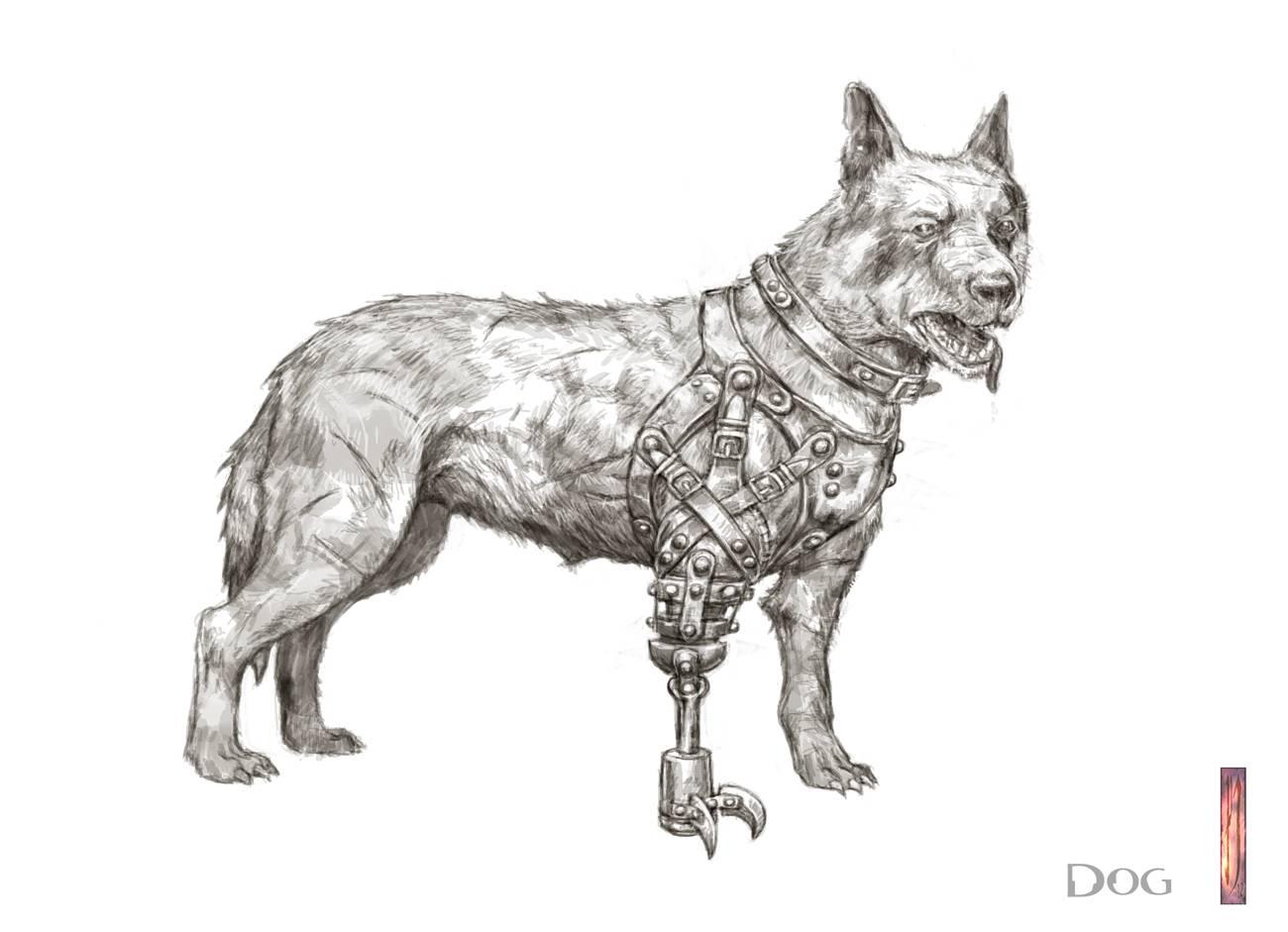 Dog version 2