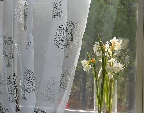 sheer curtains with embroidered trees