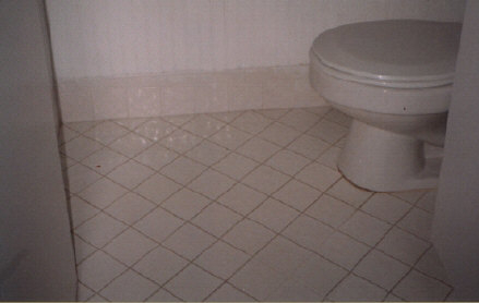 before tile & grout