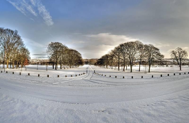 Wintery Path