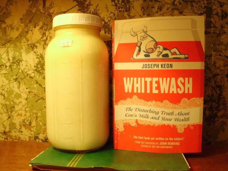 "REAL MILK versus ""homo milk"""