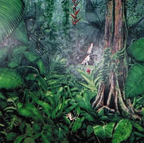 Deep Jungle 9' x 14'