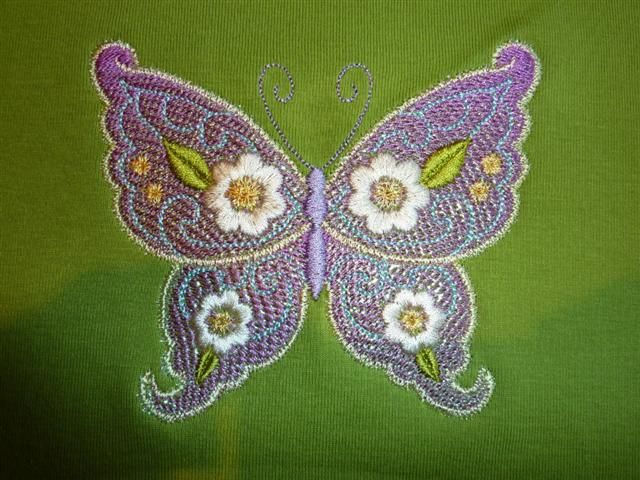 Kay's Butterfly