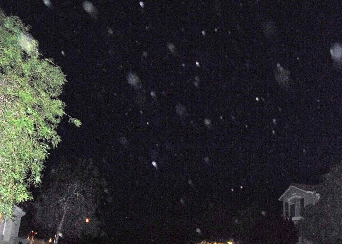 Hex orbs at night, June 11, 2010
