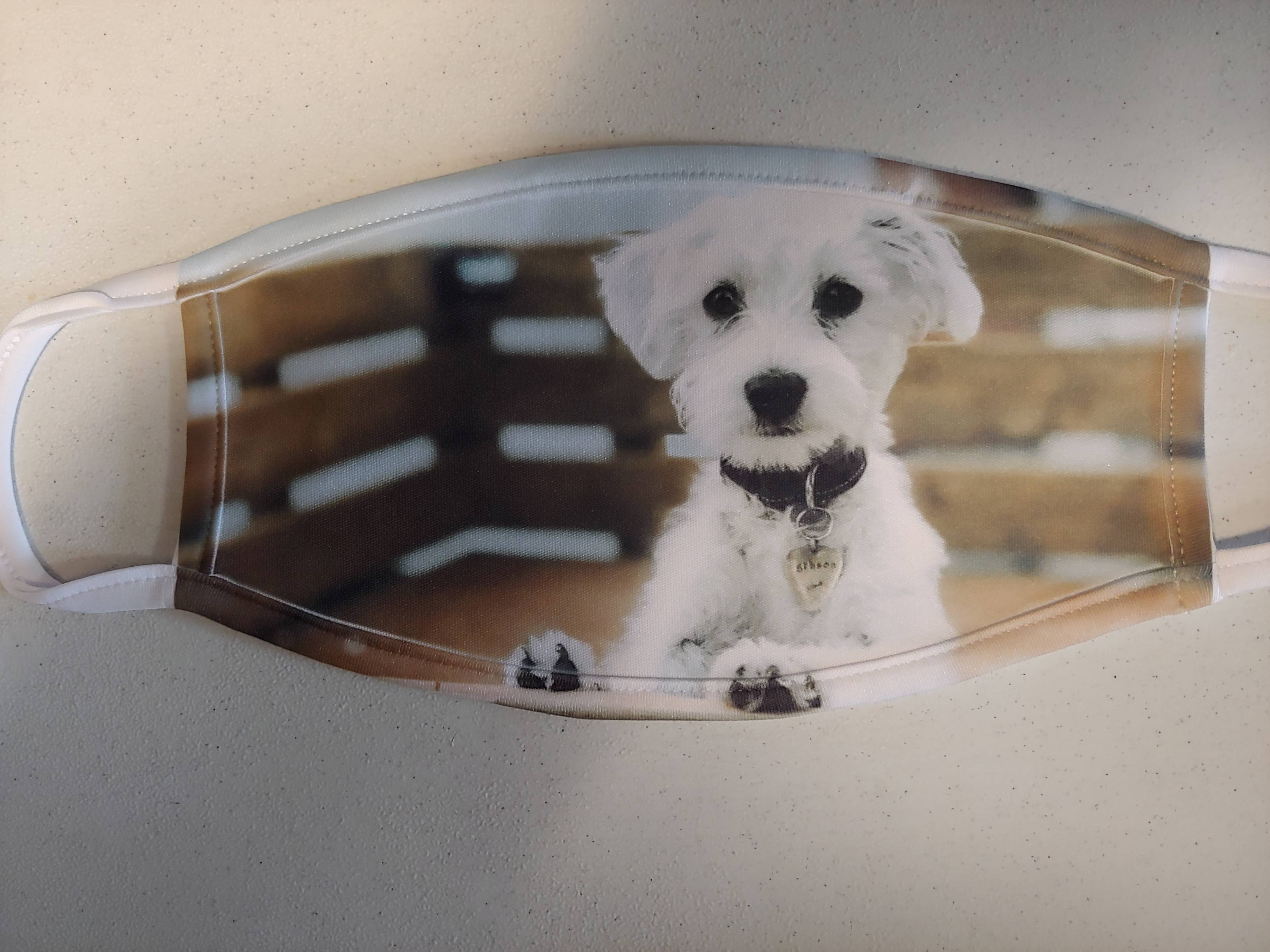 Personal Pet Photo-Display your best friend
