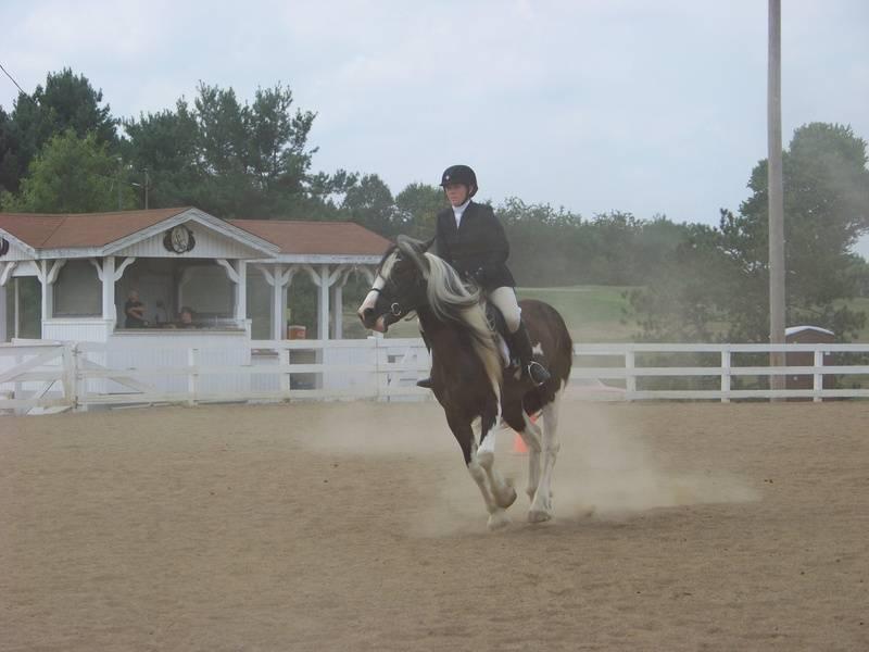 Sam/Abby 4H County Show 2010