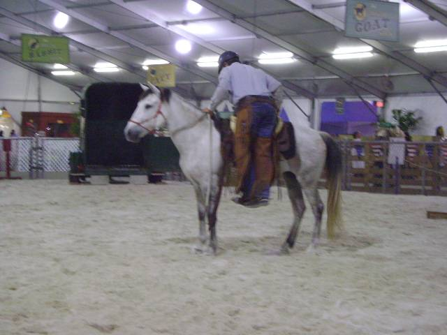 First mounting after horse's three year lay off