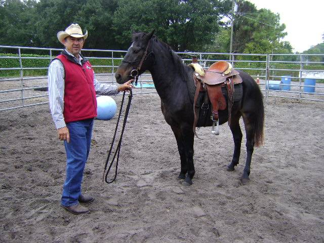 This mare would let you sit on her but would buck when asked to walk.