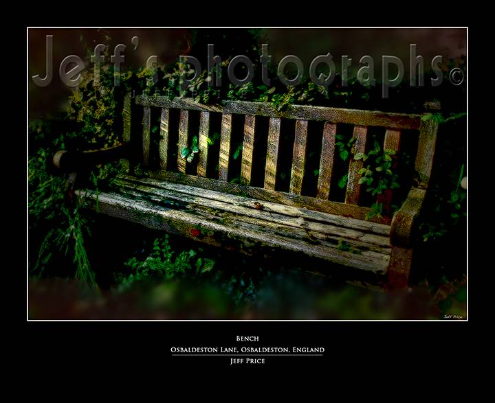 Bench, Osbaldeston Lane, Osbaldeston, England