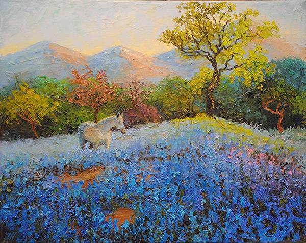 White horse and Bluebonnets.