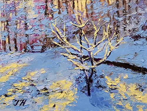 Winter backyard - 2.