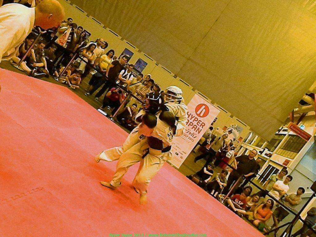 Martial arts stage