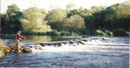 Peter O'Reilly - Fly Fishing - Castleconnell