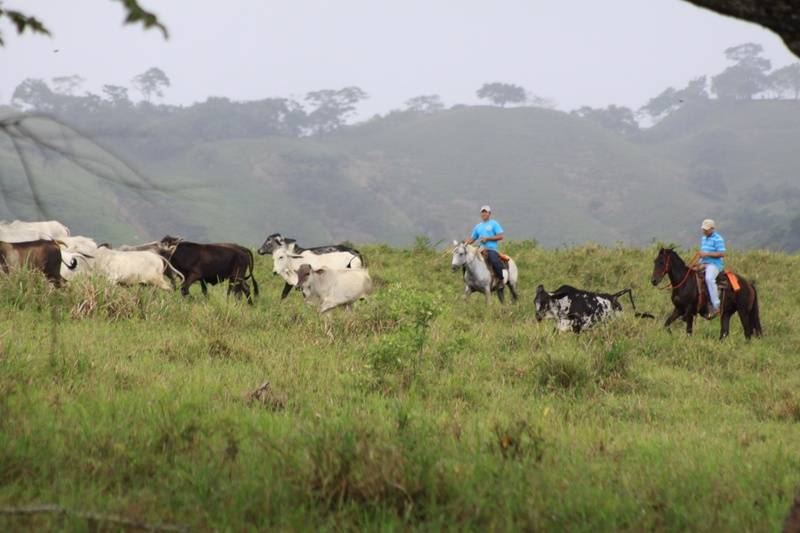 Ranchers in Ojo De Agua