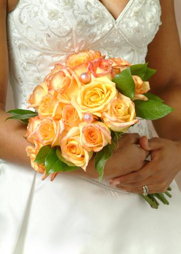 Yellow Roses Highlighted with Peach Tips