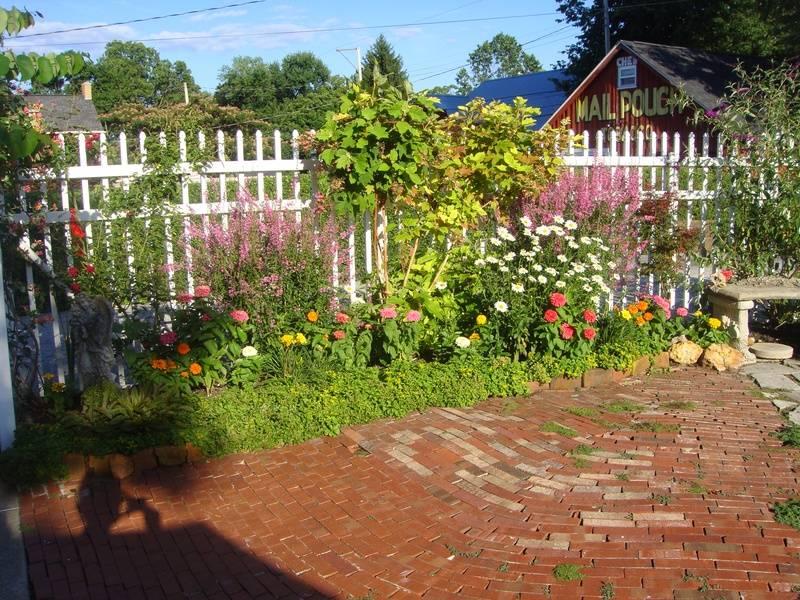 Backyard garden on the LCCPS Garden Tour.