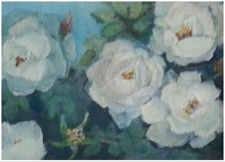 Juhannusruusut Midsummer roses