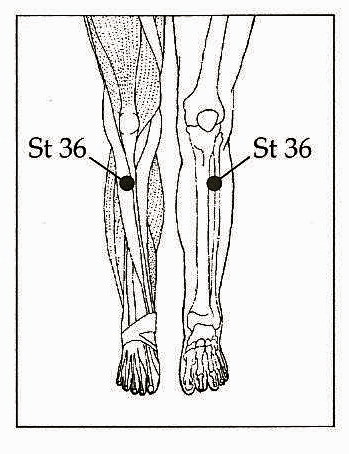 The Acupuncture Point..ST36