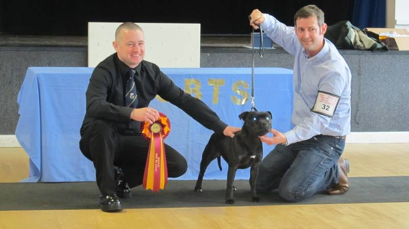 Daisy Res Best in Show  13/4/2013