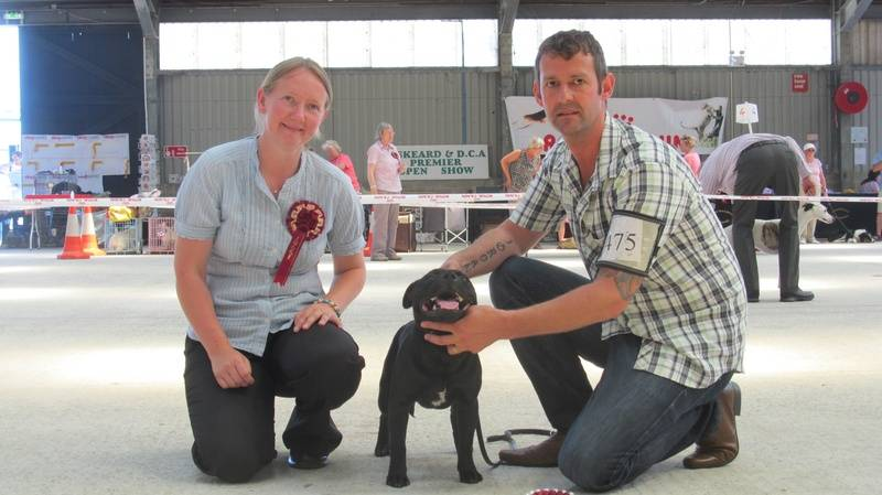 Buzz's first show,14/7/13 Best puppy in breed + terrier group 4