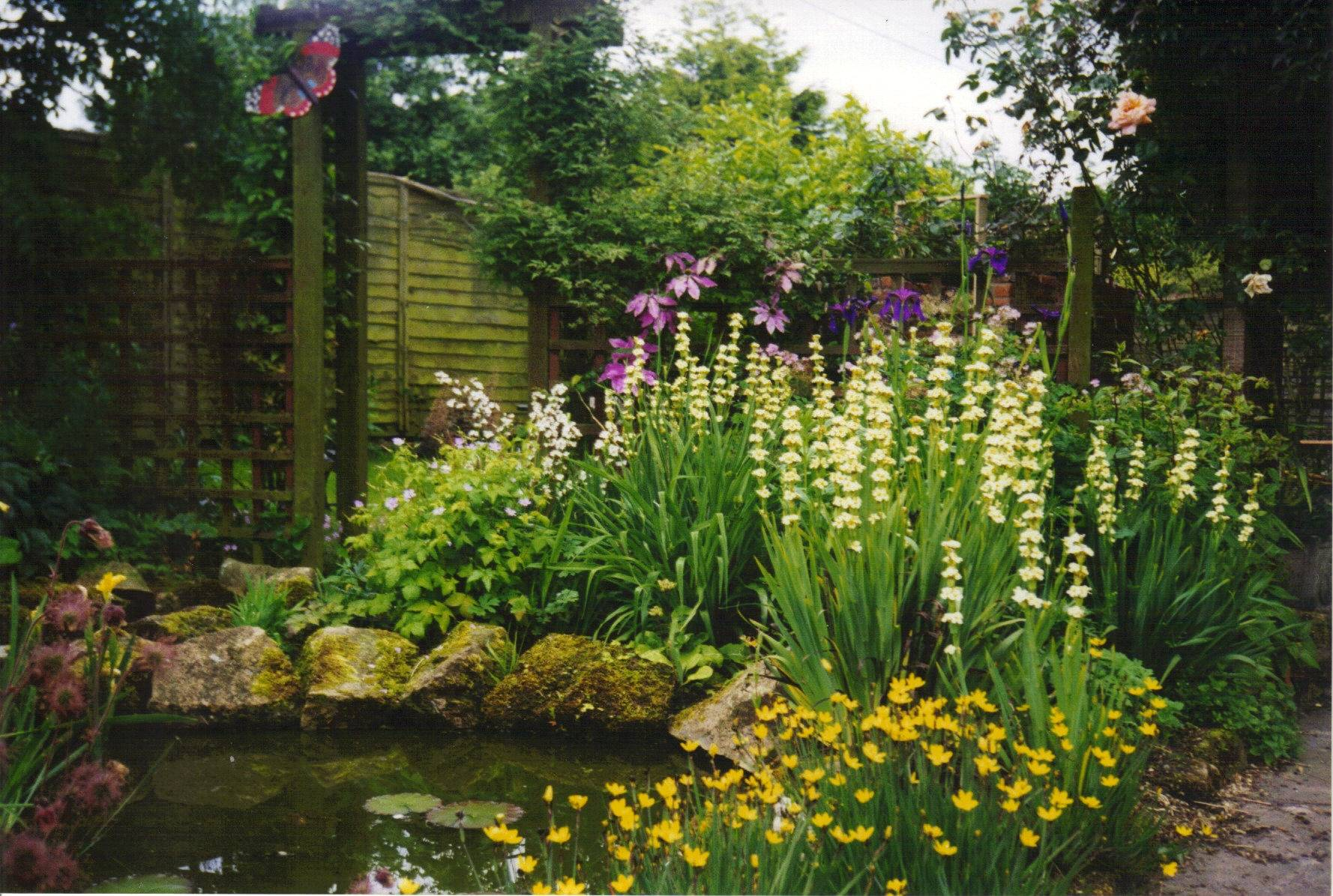 Beautiful pond planting Scarisbrick