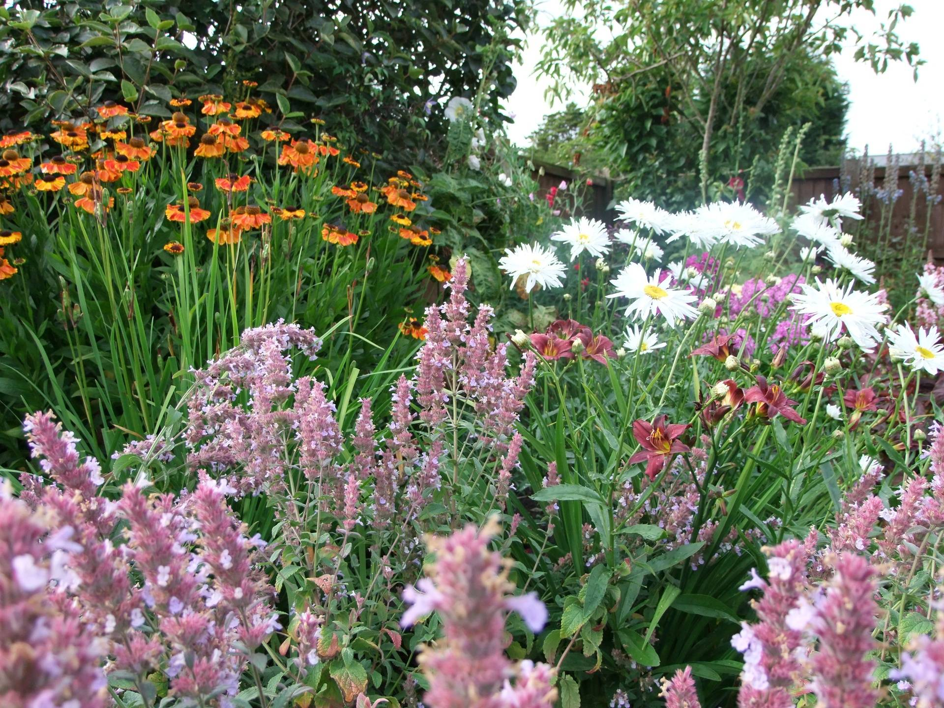 Borders at the Wheelwright's Cottage, Holmeswood