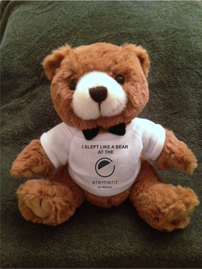 """Teddy Bears, Plush. - """"I SLEPT LIKE A BEAR AT THE ELEMENT"""" - 9"""" Tall. Makes a special gift!"""