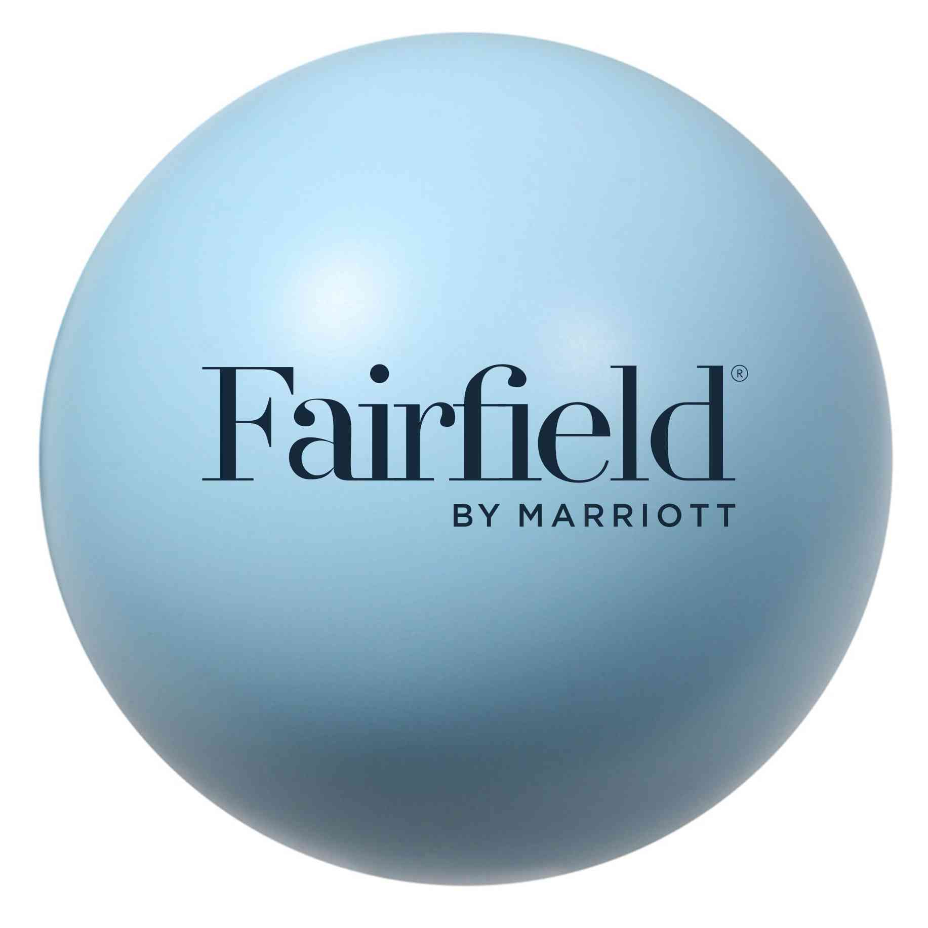 "Stress Balls, Light Blue. 3"" Diameter - Squeeze away stress!"