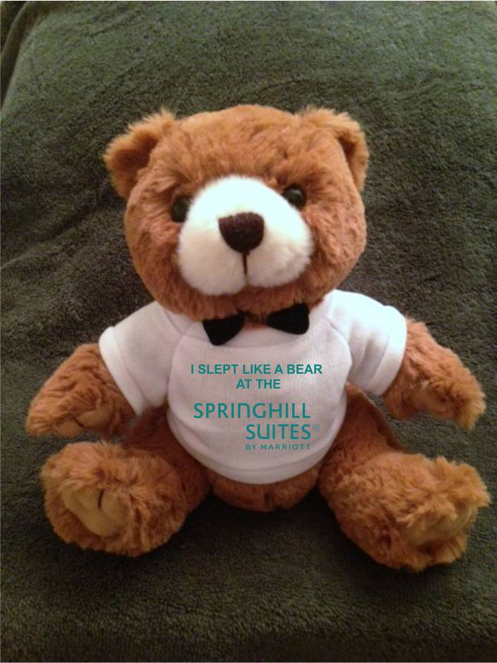 """Teddy Bears, Plush. - """"I SLEPT LIKE A BEAR AT THE SPRINGHILL SUITES"""" - 9"""" Tall.  Makes a special gift!"""