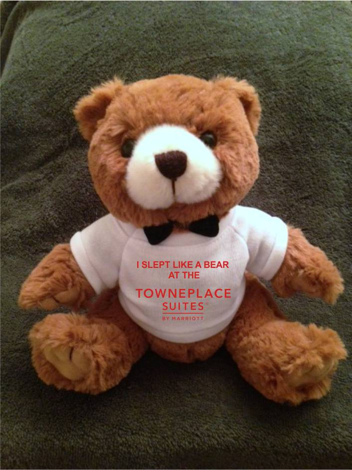 "Teddy Bears. ""I SLEPT LIKE A BEAR AT THE TOWNEPLACE SUITES"" - 9"" Tall.  Makes a unique gift!"