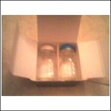 Mini Ball Canning Jars Salt and Pepper Shakers
