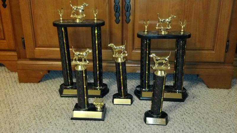 Run 'Em Down Kennels Trophies