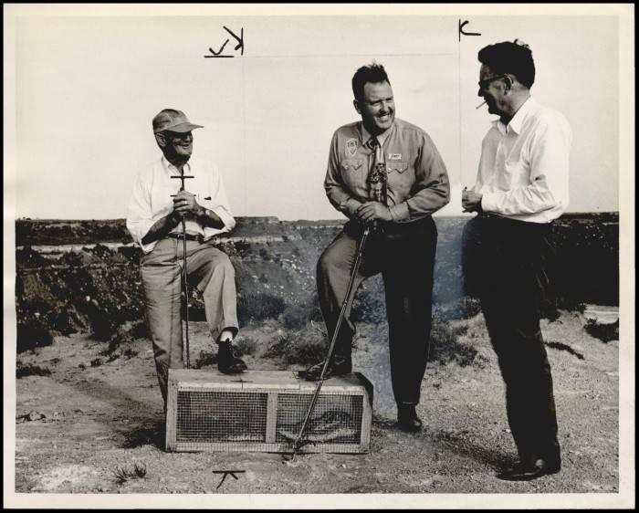 1956 Okeene Rattlesnake Hunt