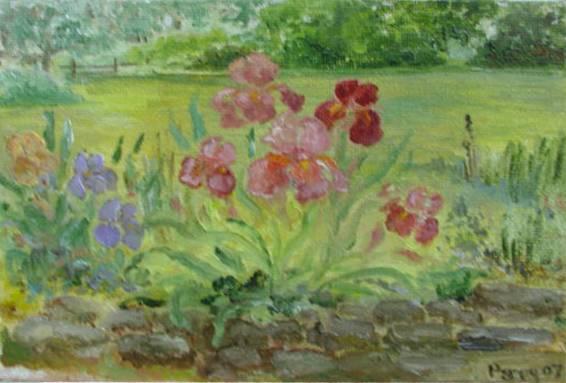 Iris Garden 2