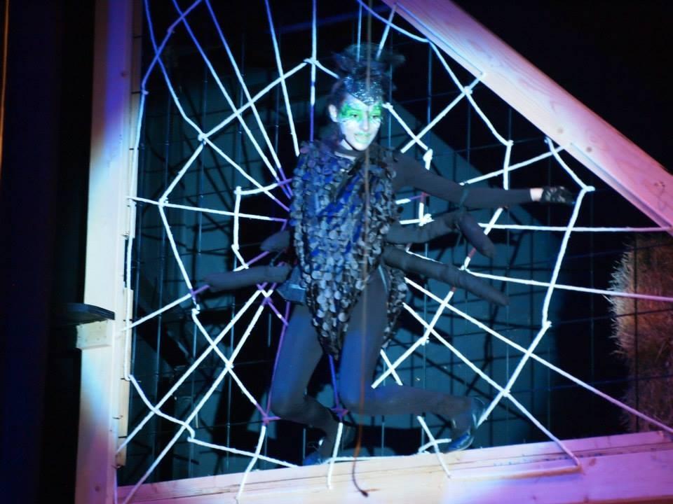 Charlotte's Web, Charlotte herself