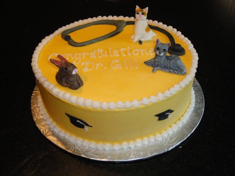 Veterinarian Graduation Cake