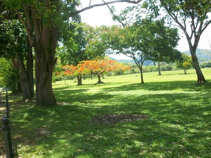 Queens Park Savannah