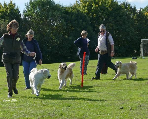 Breed Seminar Oake 9th October 2016