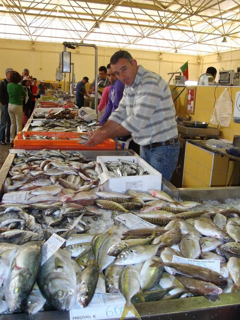 Fish Stall at the Daily Market